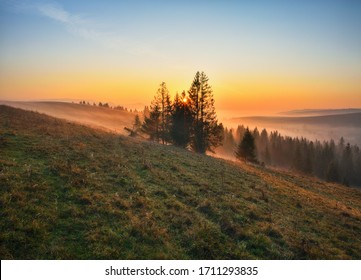foggy sunrise in the Carpathians. picturesque fog between the slopes of autumn mountains