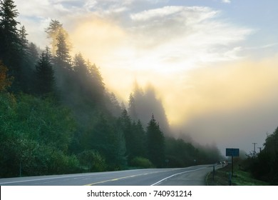 Foggy sunrise in rural Oregon in the highway126 between Florence and Eugene
