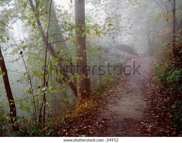 Foggy trail heading towards Hickory Nut Falls North Carolina.