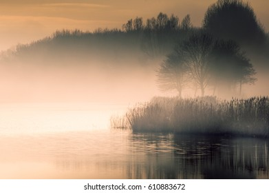 Foggy waters in National Park De Biesbosch in the Netherlands