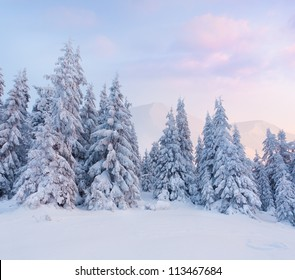 Foggy winter landscape in the mountains. Sunrise