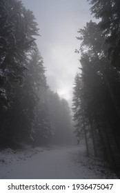 Foggy and Winter Trebevic mountain magic moments