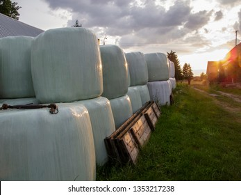 foil wrapped hay bales, animal feed