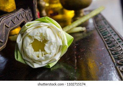 Fold lotus flower for pay respect to Buddha,space for text.