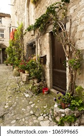 Foliage along the walls of a home in a small Saint-Paul-de-Vence village.