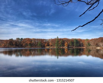 Foliage at Lake Tiorati, USA