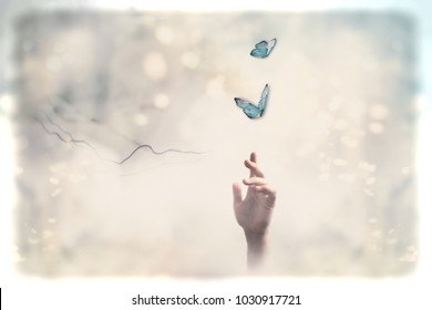 Follow your dreams and freedom concept. Metaphorical ethereal background.