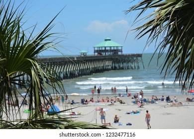 The Folly Beach Pier framed by palm tree. Folly Beach South Carolina.