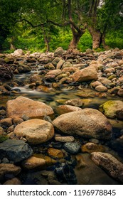 Fonias river on Samothrace Island in Greece crossing a beautiful forest while flowing through big stones shot with long exposure