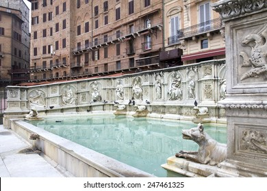 Fonte Gaia (Fountain of Joy), Piazza del Campo, Siena, Tuscany, Italy