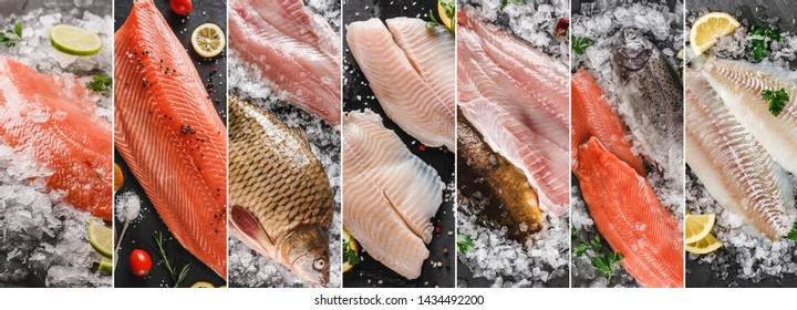 Food collage of various fresh fillet fish, white fish pangasius, salmon red fish, trout fish steak with ice and spices. Seafood, top view