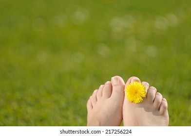 Food with a dandelion flower