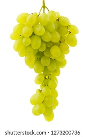 Food and drinks: single bunch of fresh ripe grapes