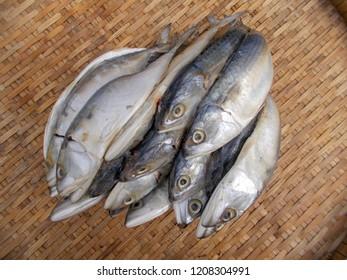 Food, fish, Thailand