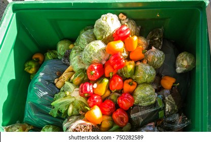 Food in the garbage container