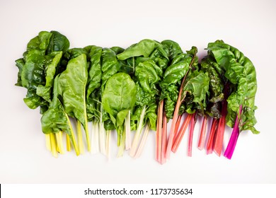Food gradient of organic rainbow chard: spray-free leafy greens in linear arrangement isolated on white background