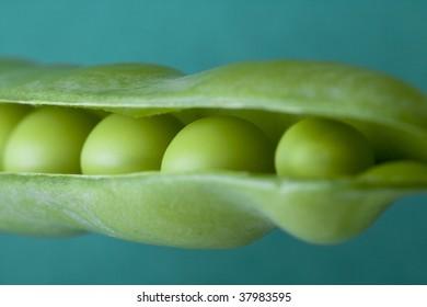 FOOD IMAGE  close up shot of fresh field peas.