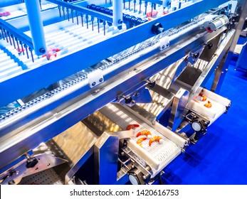 Food industry. Conveyor for processing sea products. Shrimp conveyor. Shock freezing shrimp. Production of frozen semi-finished products.