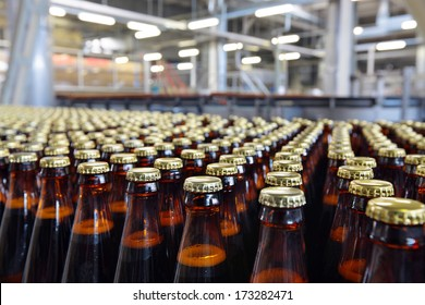 The food industry. Glass beer bottles moving on conveyor