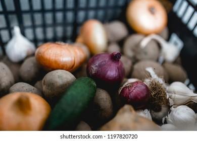 food ingredients colorful