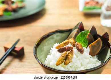 Food insect is the healthy meal high protein diet in the black dish on wooden background. Concepts for edible insects contributing to food security and food revolution. Close-up, Selective focus.