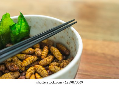 Food insect is the healthy meal high protein diet in the bowl on wooden background. Concepts for edible insects contributing to food security and