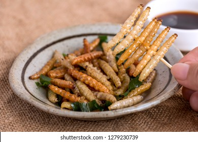 Food Insects: Woman's hand holding Bamboo worm Caterpillar insect fried crispy for eating as food items in plate and sauce on sackcloth, it is good source of protein edible for future food concept.