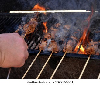 Food: pork kabobs on barbecue grill.