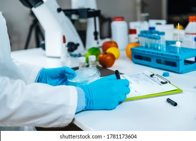 Food Quality Assessment in Microbiology Laboratory, microbiologist filling forms, following standard operating procedure