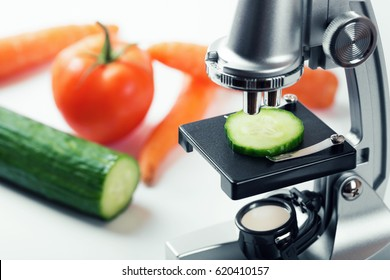 food quality control concept - cucumber inspection with microscope
