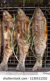 Food scenes - grilling trout. Preparing fresh fish on electric grill. Cooking and frying. Top view