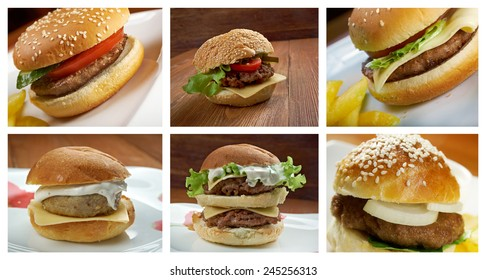 Food set of different american  hamburger . collage