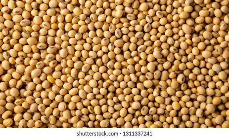 Food soy background
