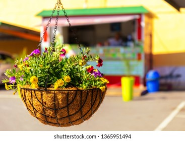 A food stall out of focus in the background with a hanging flowerpot and colorful flowers in the foreground