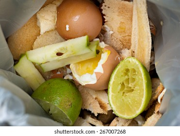 Food waste inside a plastic biodegradable bag. The bag contains limes, green limes, eggs, and toast. This bag is collected and the contents converted to compost.