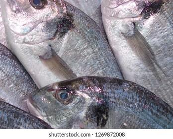 Food - whole fish