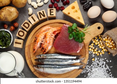 Foods rich in iodine on grey background.
