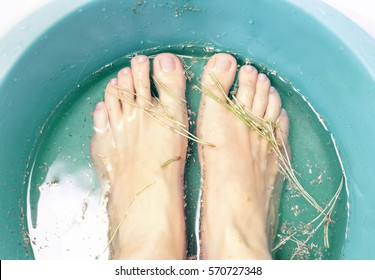 Foot bath in bowl with fir-needles and dried chamomile flowers