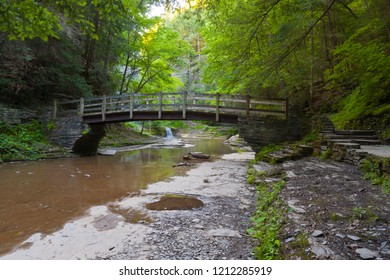 A foot bridge allows hikers to climb a steep trail in the gorge wall.  Summer within the gorge of Buttermilk Falls Park.