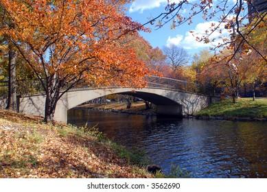 Foot Bridge in Autumn