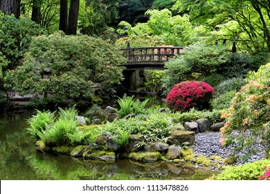 A foot bridge over a small pond, and lush green foliage in a Japanese garden.