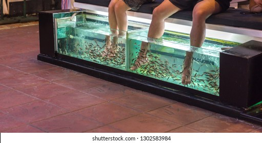 Foot massage in aquarium by fish in Thailand