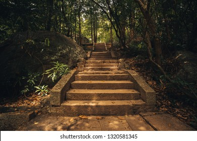Foot path through Ritigala Hermitage and Ritigala forest reserve in Sri Lanka