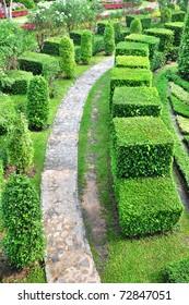 foot path in topiary work green garden