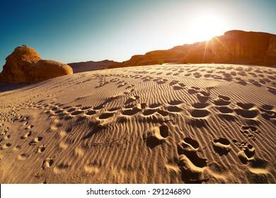 Foot prints in the desert at sunset, Sinai, Egypt