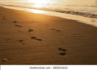 Foot steps in the sand during a sunny golden sunrise - golden sunrise - footprints in the sand - seashore footprints - travel restrictions / travel moody photography freedom photography