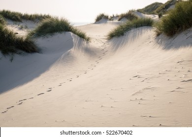 Foot tracks in dunes