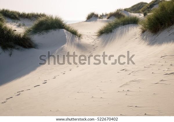 Foot tracks in dunes