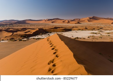 Foot tracks on top of a dune at Sossusvlei in Namibia