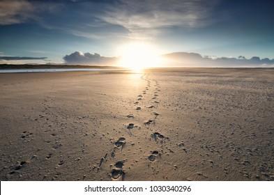foot tracks to sunshine on horizon, Texel